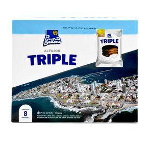 Alfajor-Triple-Punta-Ballena-Valija-x8-1-9188